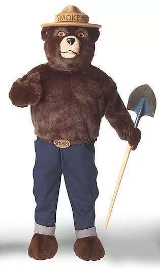 smokey bear costume