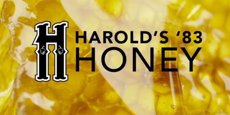harold s honey ale
